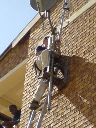 Mamelodi-david-ladder.jpg